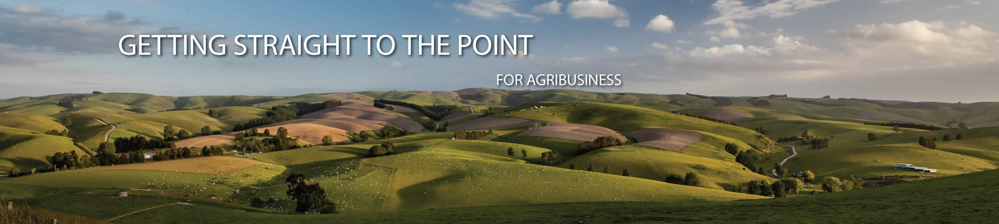 Getting straight for agribusiness